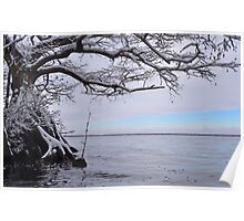 Lake Drummond Winter Blues Poster
