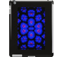 Mirrored Image iPad Case/Skin