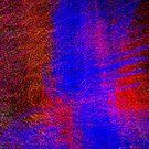 Splash of lights  by Daniel  Parent