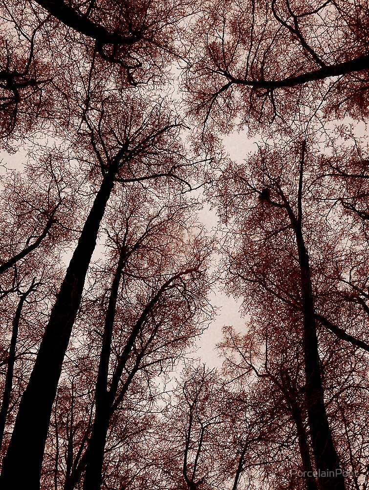 Red Trees by PorcelainPoet