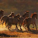 On the move..... by Sue Ratcliffe