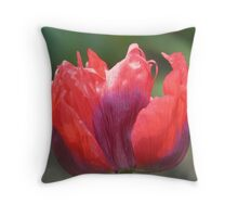 Red and Purple flower at Osbourne House Throw Pillow