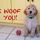I Woof You! by Christine Wilson
