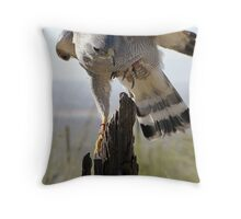 Gray Hawk  Throw Pillow
