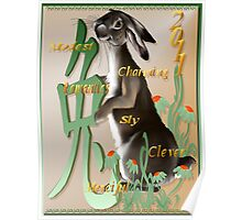The Year Of The Rabbit Poster