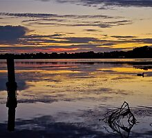 Sunrise on the Budgewoi Lake. ( 11-2-11 ) by Warren  Patten