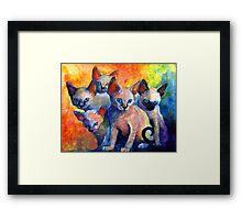 Devon Rex kittens Cat painting Svetlana Novikova Framed Print