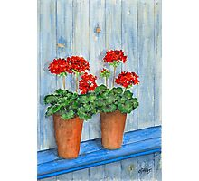 GERANIUMS - WATERCOLOR Photographic Print