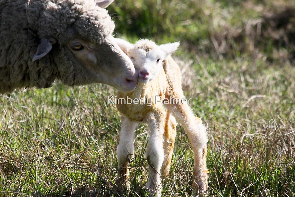 Mama and her Lamb by Kimberly Palmer