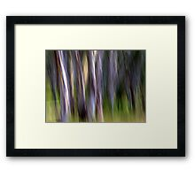 The Shedding Framed Print