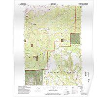 USGS Topo Map Oregon Big Rock Flat 279033 1995 24000 Poster