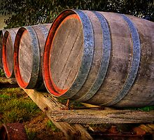 Barrels - Minya Winery by Hans Kawitzki