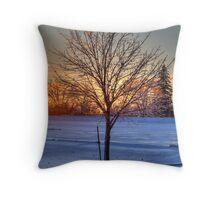 Frigid Sunset Throw Pillow
