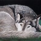 Preparing for Sleep - Wolf by Heather Ward