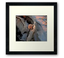 Ice Scupture 1 Framed Print