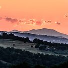 Make hay while the sun still shines by MarcW
