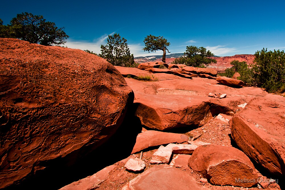 From A Rocks Point Of View - Capital Reef Utah by Melissa Seaback