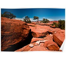 From A Rocks Point Of View - Capital Reef Utah Poster