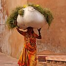 Heavy Load, Agra Fort by Christopher Cullen