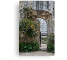 New Life by Old Wall and Gate in Antigua, Guatemala Canvas Print