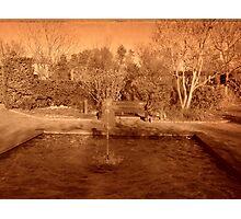 Sepia Winter Photographic Print