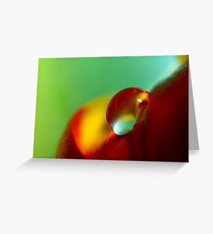 Tulip Drop Greeting Card