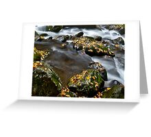 Appalachian Stream Flow Greeting Card
