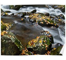 Appalachian Stream Flow Poster