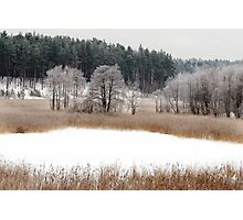Old lake in winter time Photographic Print