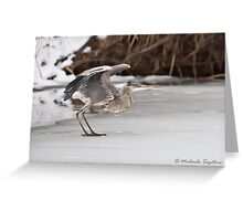 Great Blue Heron on ice Greeting Card