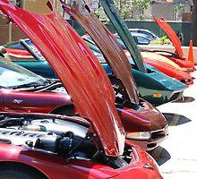 Corvette Event Chicago, IL. I by zwrr16