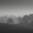 Tranquil Mist  by StefanFierros