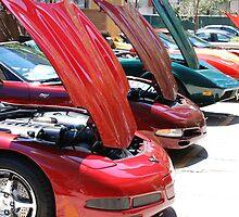 Corvette Event Chicago, IL. II by zwrr16