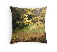 Heaven's Touch Throw Pillow