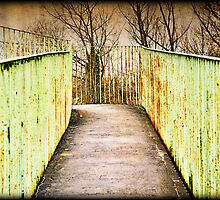 Bridge by Lea Valley Photographic