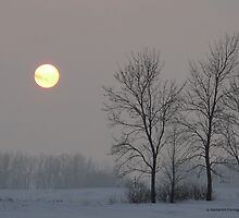 Sun in the Sky on a Snowy Day by Barberelli
