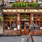 The Black Bull by Tom Gomez