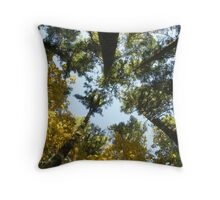Look to God Throw Pillow