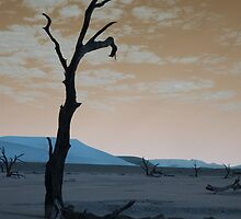 """L"" - Deadvlei, Namibia by Lucy Heber-Percy"