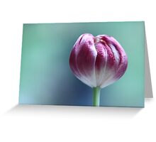 TuLiP  - JUSTART © Greeting Card