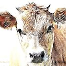 Jersey Milk Cow by Pat Moore