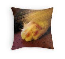 FURRY FOOT Throw Pillow