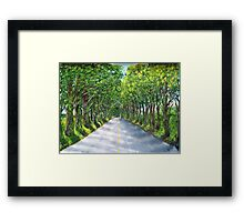 On The Road to Koloa Framed Print