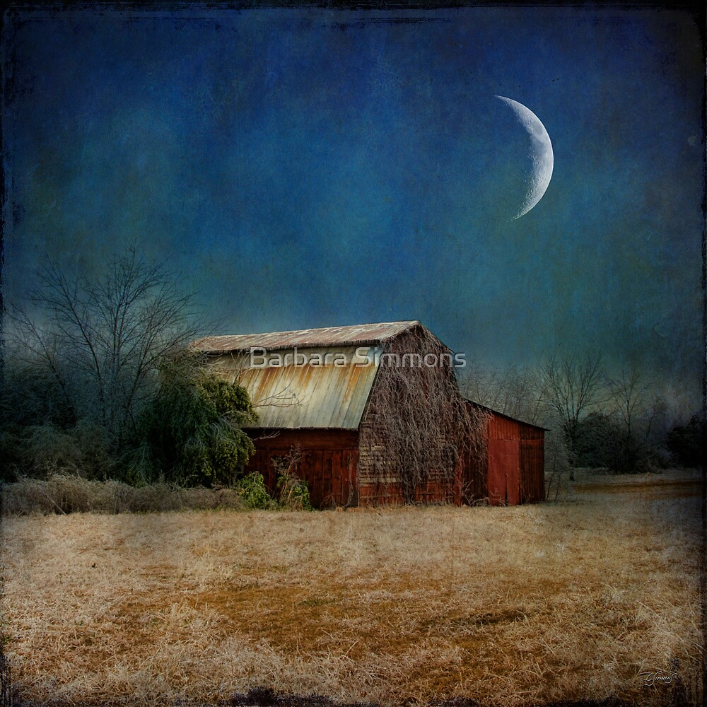 In the Land of Cotton... by Barbara Simmons