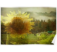 Sunflower Series : 1 Poster