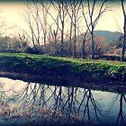 Winters Reflection by Hazel Dean