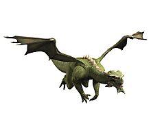 Green Dragon in Flight Photographic Print