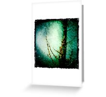 Dried up Greeting Card