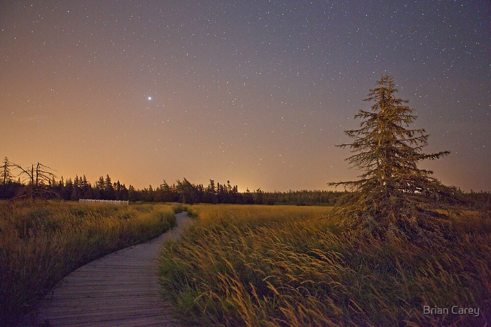 Journey to Jupiter by Brian Carey