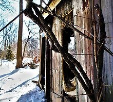 Abandoned Shack, Westbrook, CT by baker15